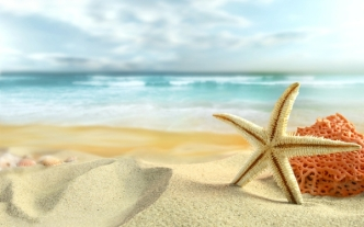 ocean sand stars starfish sea beaches_wallpaperswa.com_95